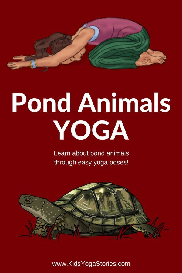 Pond Animals for Kids: Learn about pond animals for kids through pond animal yog...