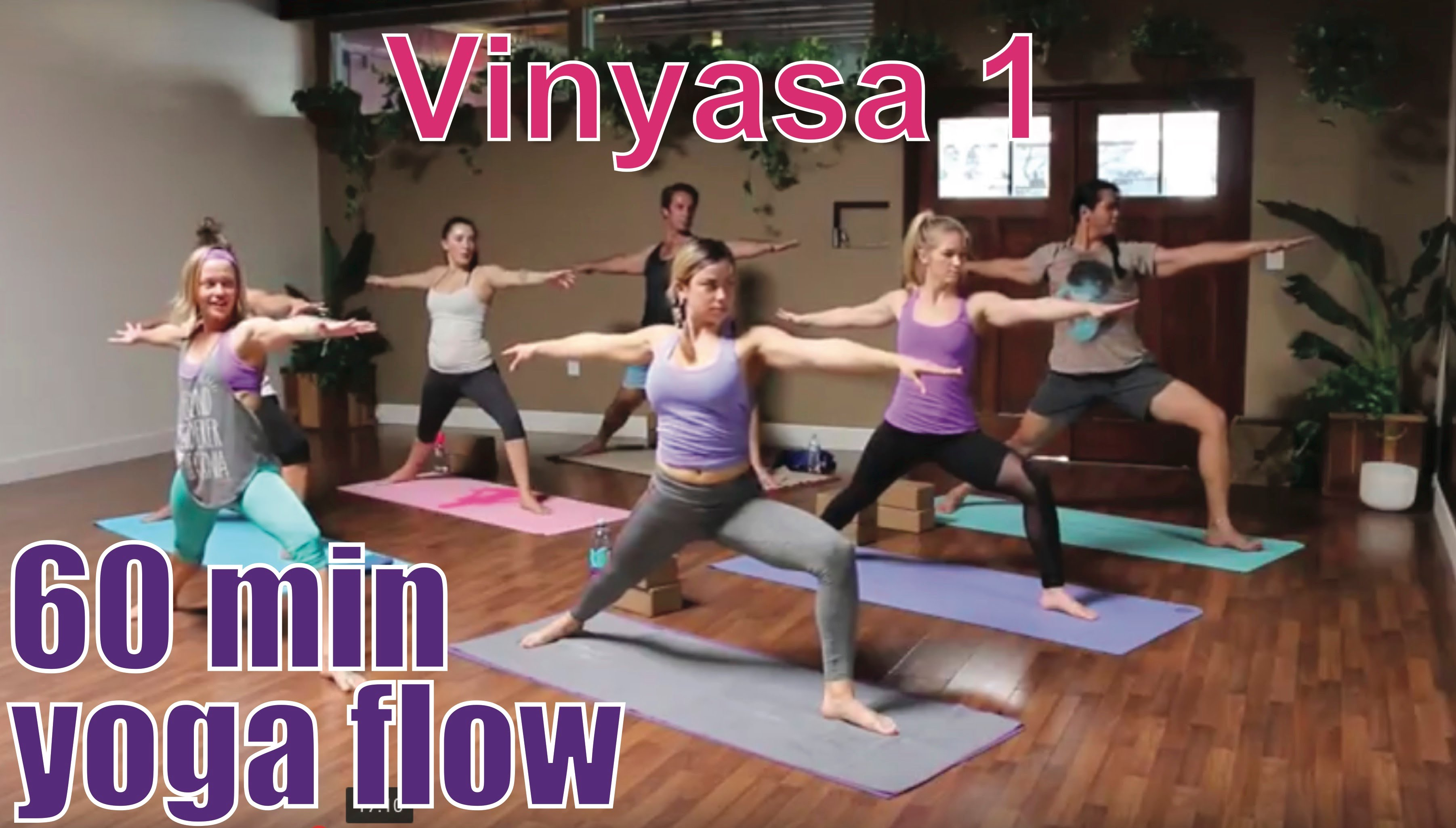 Yoga Poses 60 Minute Yoga Class Vinyasa 1 Beginner Flow About Yoga Blog Home Of Yoga The Zen Way Of Teaching Yoga Online