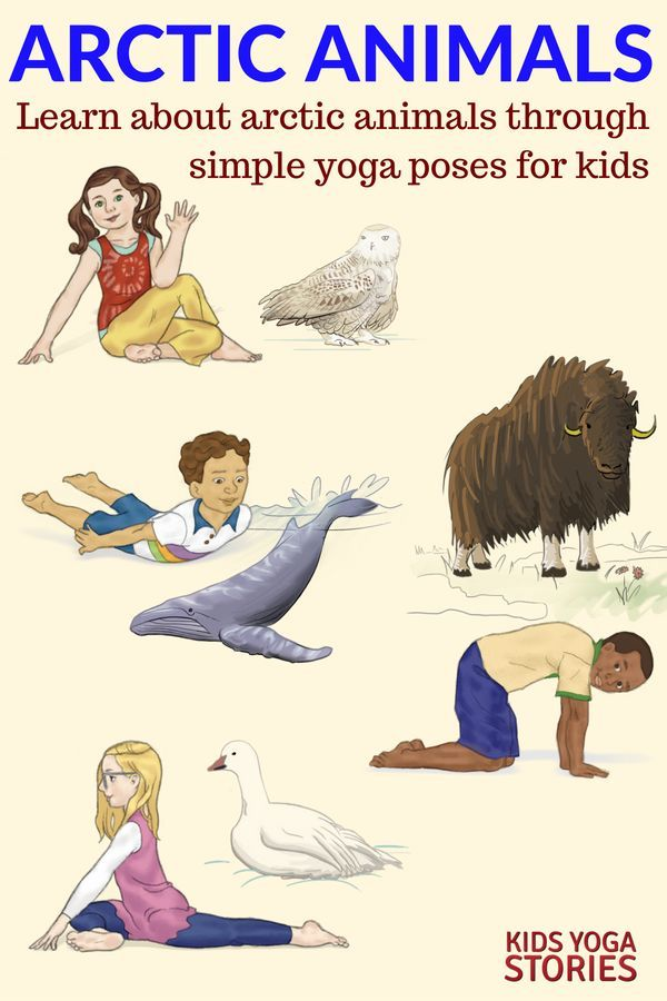 Learn about Arctic Animals through simple yoga poses for kids | Kids Yoga Storie...