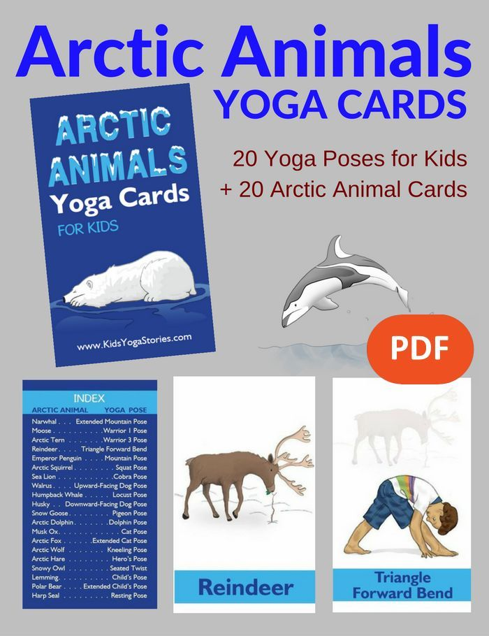 Arctic Animals Yoga Cards for Kids PDF Download | Kids Yoga Stories