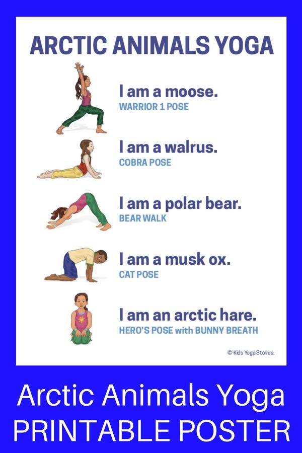 Learn about arctic animals through simple yoga poses for kids! Post includes 11 ...