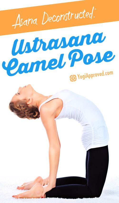 Asana Deconstructed – Exploring: Ustrasana (Camel Pose)