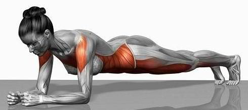And this is why we plank....