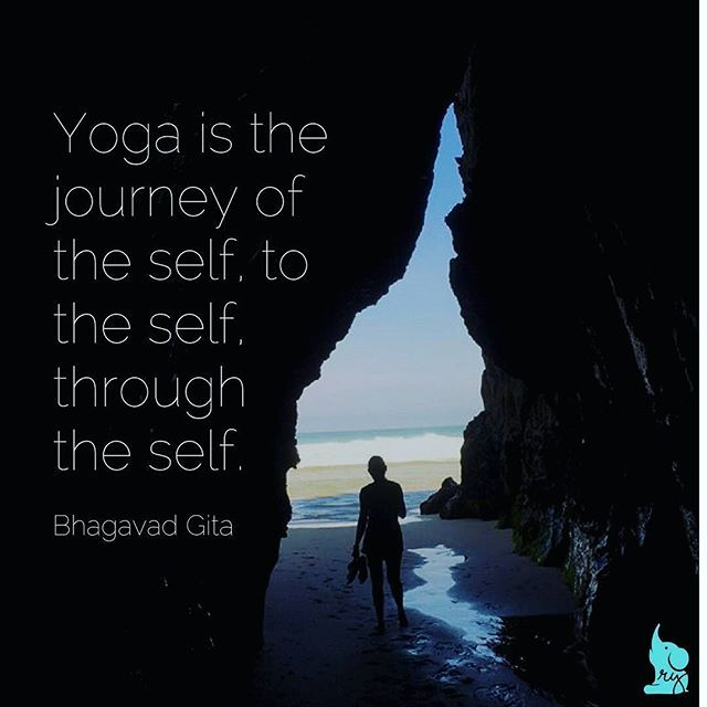I'm so grateful for the lessons that yoga has taught me about the body, the ...