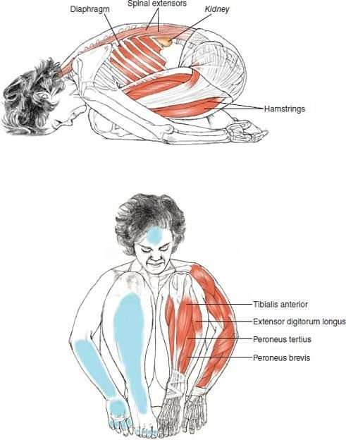 Yoga | Balasana Child's Pose .......... Benefits : 1.Releases tension in back,...