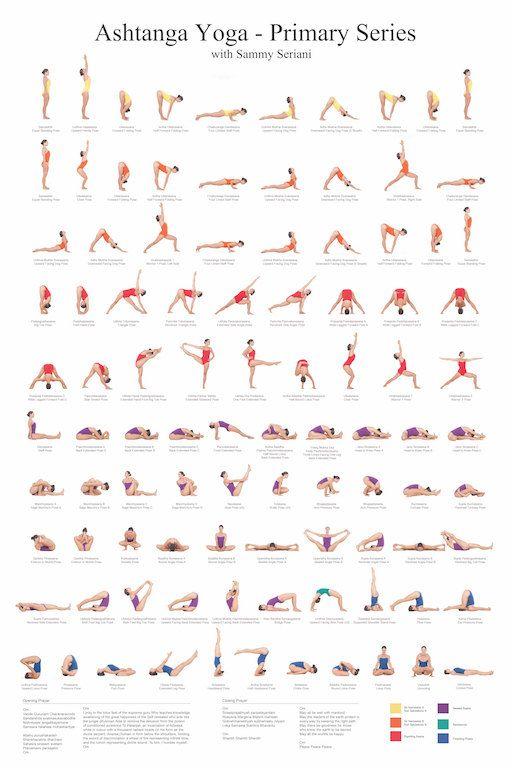 24x36 Ashtanga Yoga Primary Series with Sammy Seriani. This poster illustrates t...