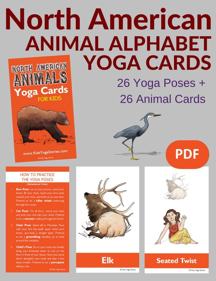 Learn the alphabet by acting out the A-Z of North American animals through yoga ...
