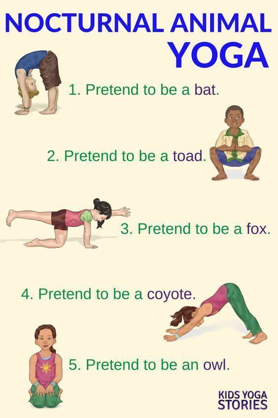 Nocturnal Animals Yoga (Printable Poster