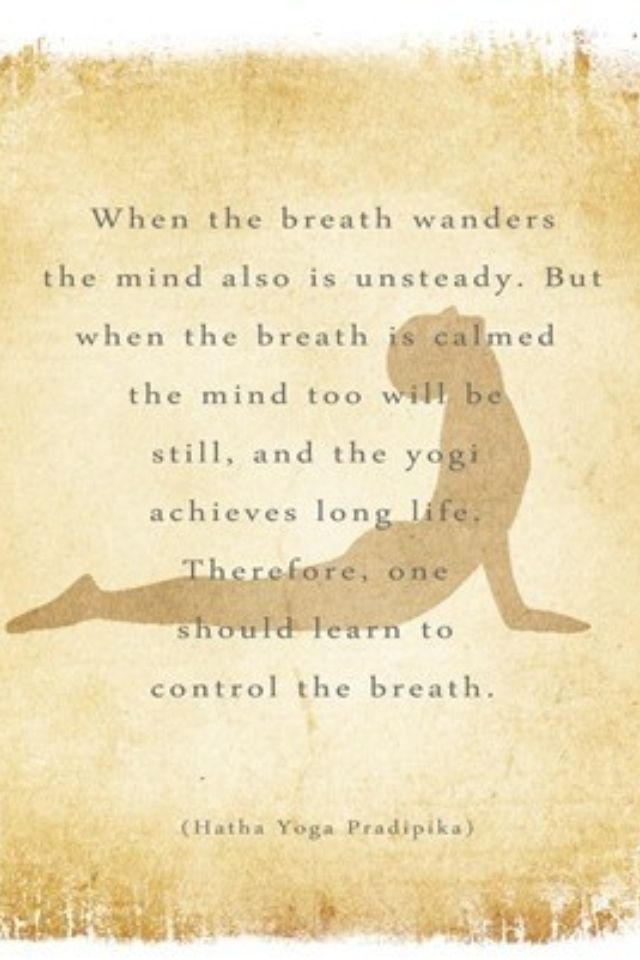 DownDog Inspirations: When the breath wanders the mind is also unsteady… From ...