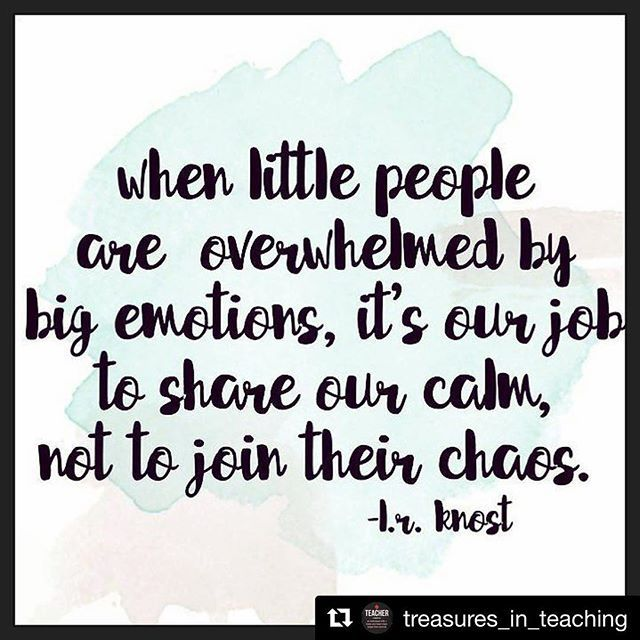 When little people are overwhelmed by big emotions, it's our job to share ou...