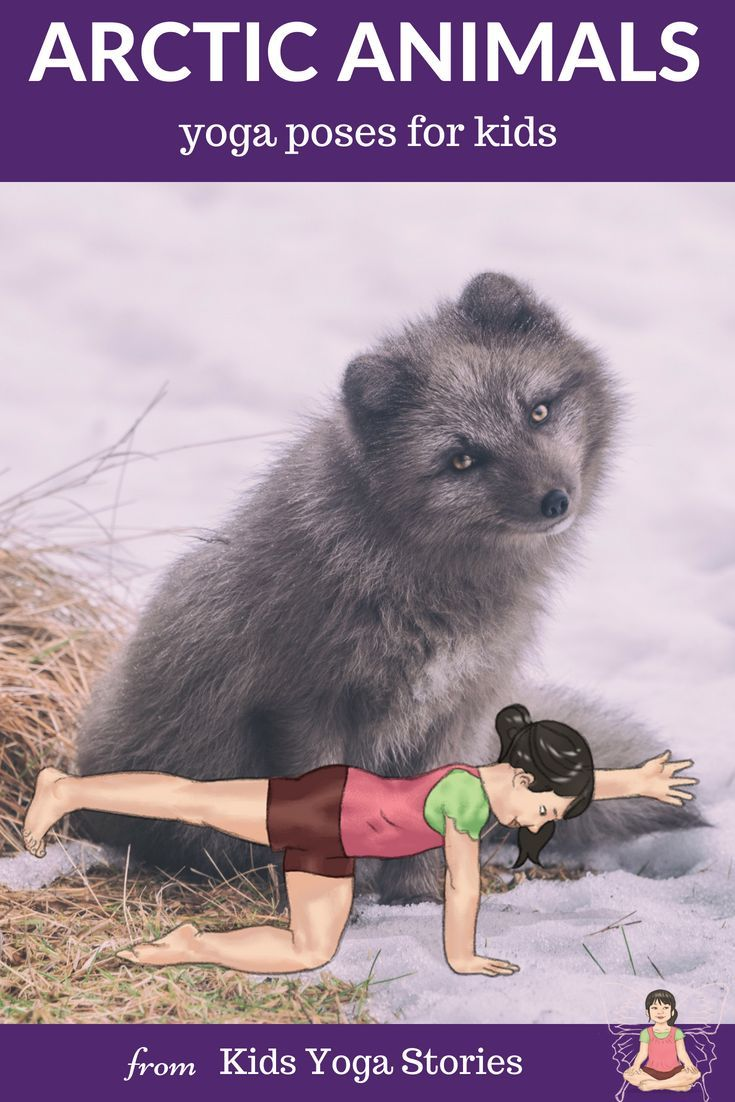11 Arctic Animals Yoga Poses for Kids (Printable Poster).  Learn about arctic an...