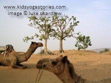 Camel ~ Camel Pose