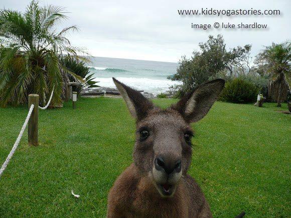 Kangaroo ~ Chair Pose with kangaroo paws