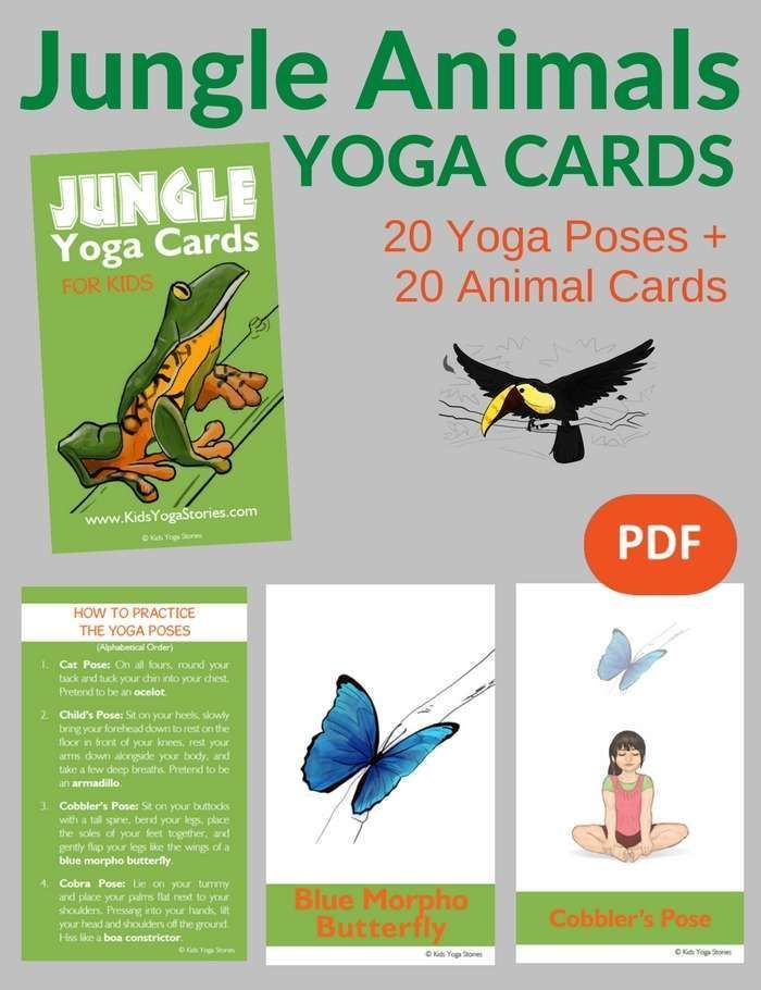 Learn about jungle animals through movement. Pretend to be a turtle, toucan, and...