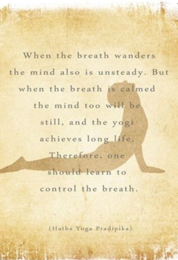 I'm much better at my practice when my breathing is steady. #yoga #fitness