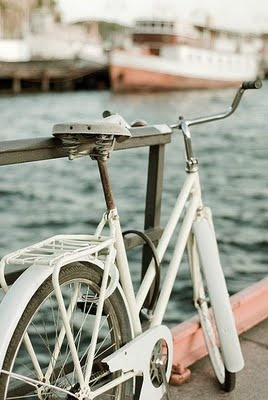 bike ride please! Love this scenery...might have to ride my bike there. :)