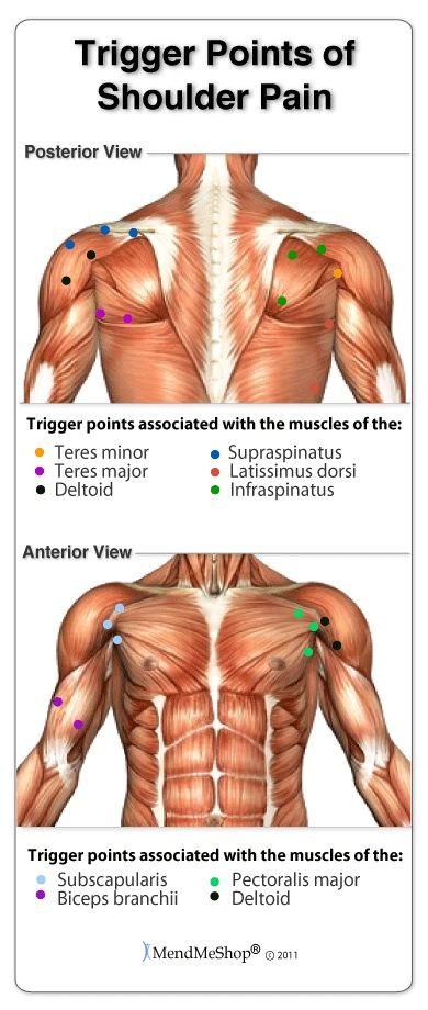 Yoga Poses & Workout : Human body trigger points result from toxins