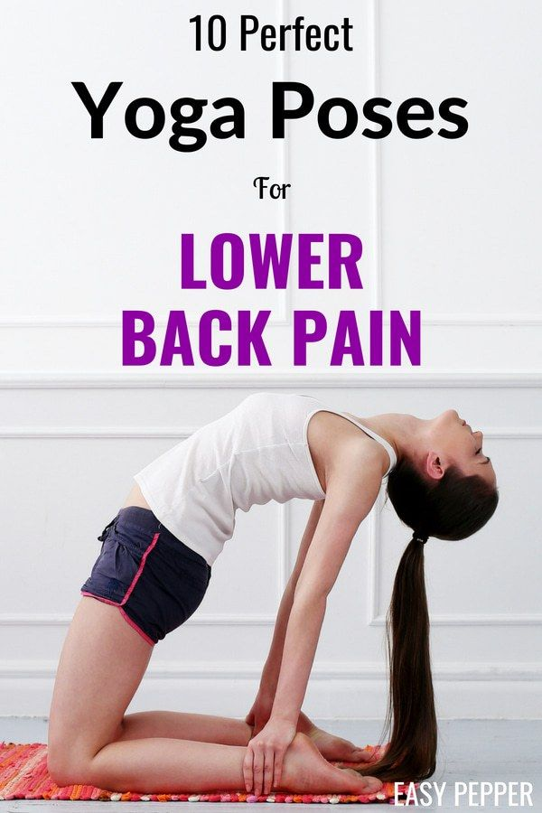 Tired of fighting a constant war with the lower back pain, then definitely check...
