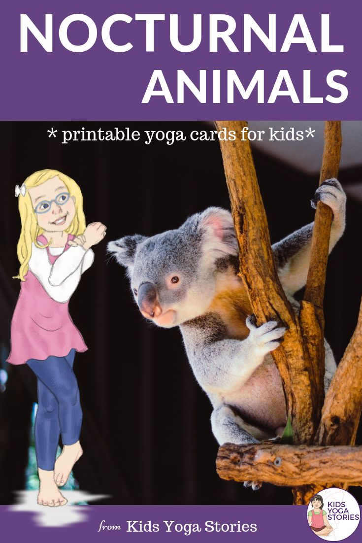 Nocturnal Animals Yoga Cards for Kids!  Learn about the amazing animals and crea...