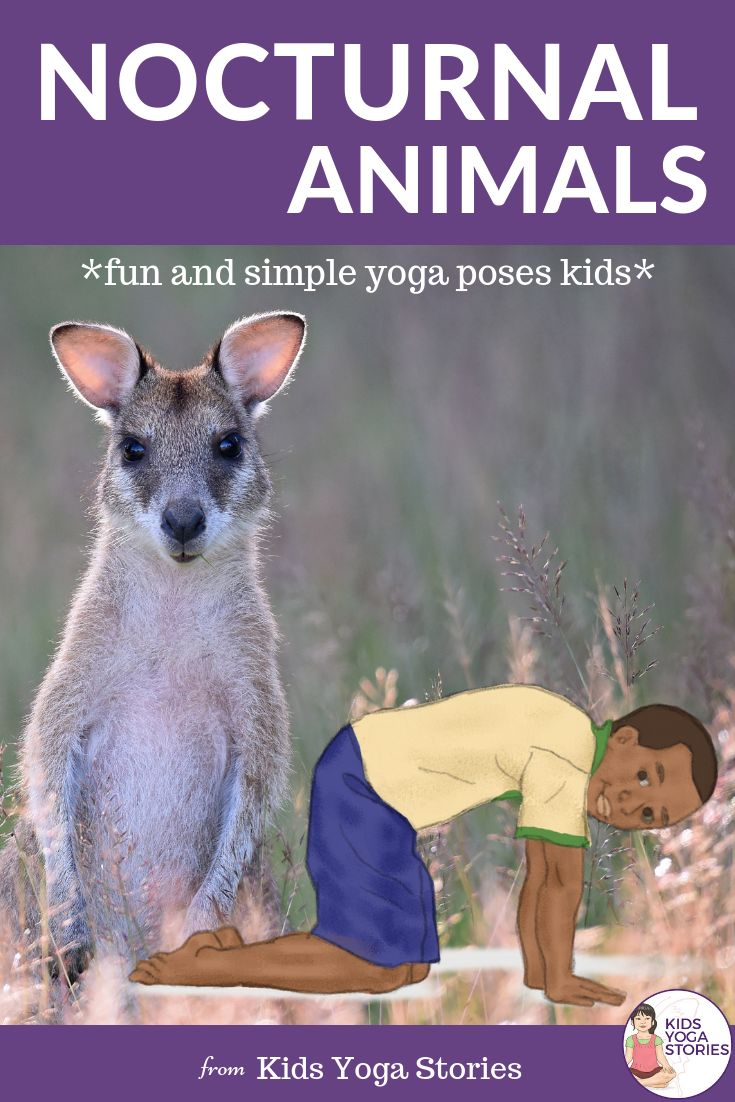Nocturnal Animals Yoga Cards for Kids!  These printable yoga cards are a great a...
