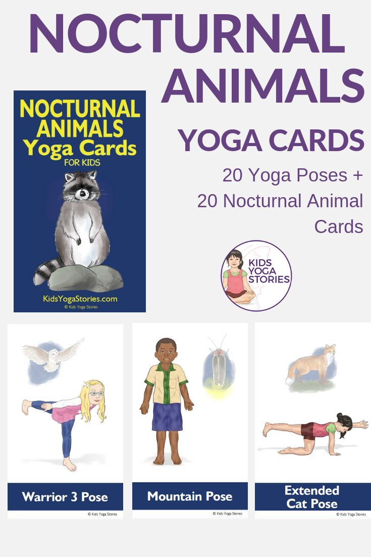 Nocturnal Animals Yoga Cards for Kids!    Learn about the amazing animals and cr...