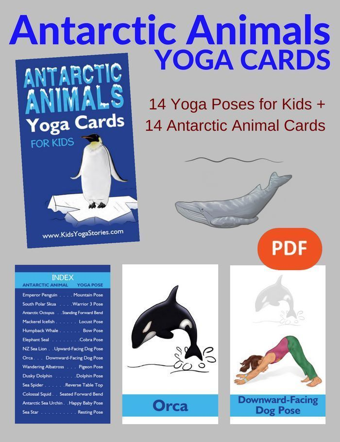 Learn about Antarctic animals through these simple and fun yoga poses for kids! ...