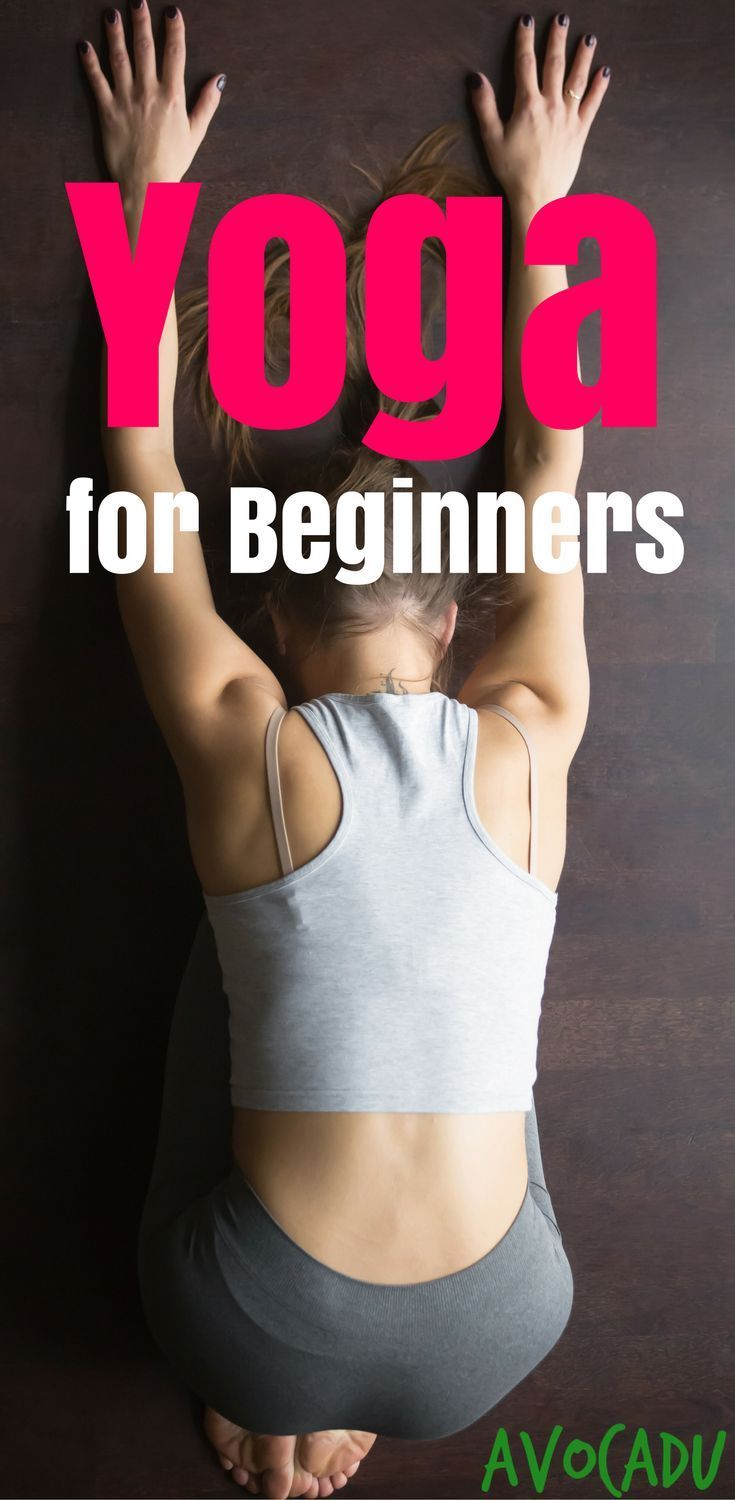Yoga Workout for Beginners | Yoga for Beginners | Yoga Poses for Beginners | avo...