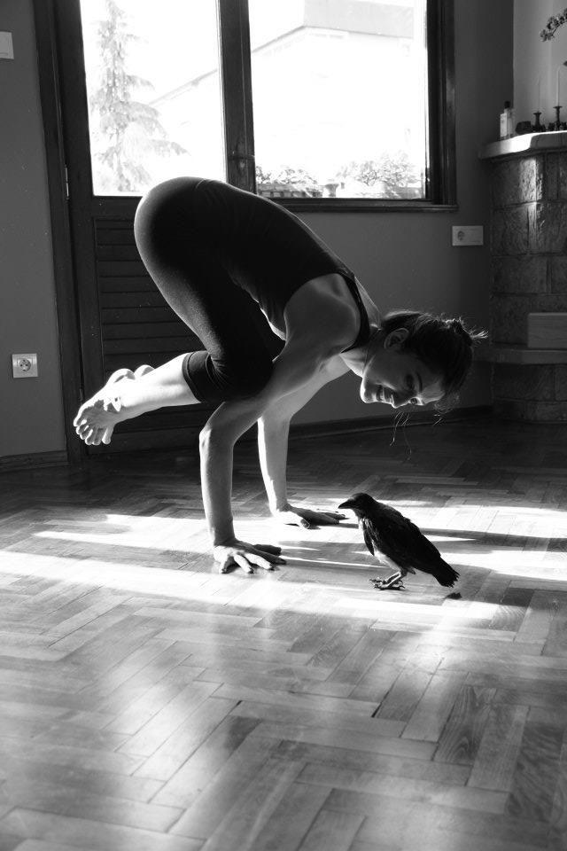 Crow Pose Candor