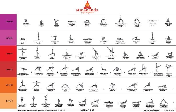 Six levels of yoga sequence.