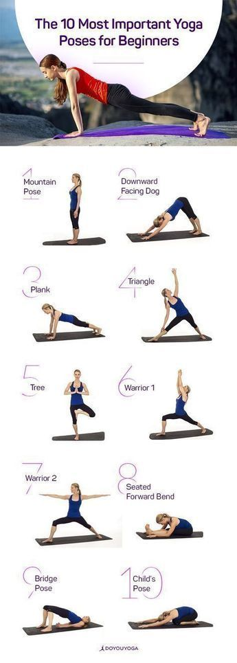 Yoga for Beginners   The 10 most important Yoga Poses for the Yoga Beginner #Yog...