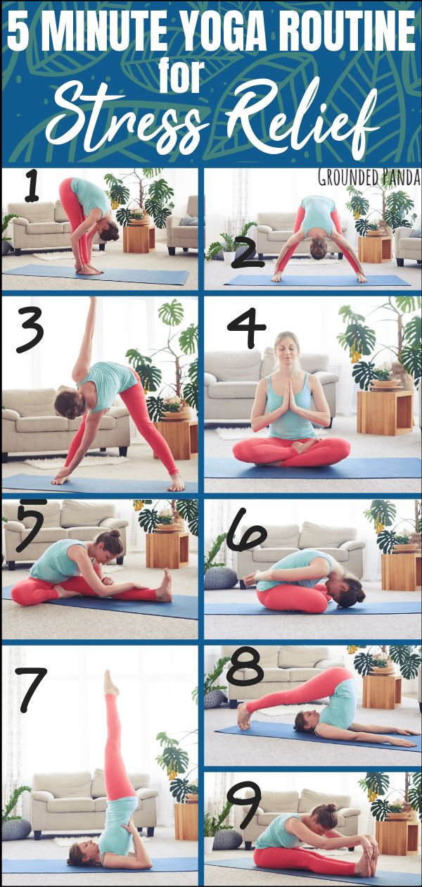 5 Minute Beginner Yoga Routine for Stress Relief