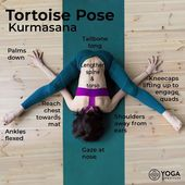 Pose of the Weekend: Tortoise Pose is a yoga asana. __Benefits__ Strengthens: Ab...
