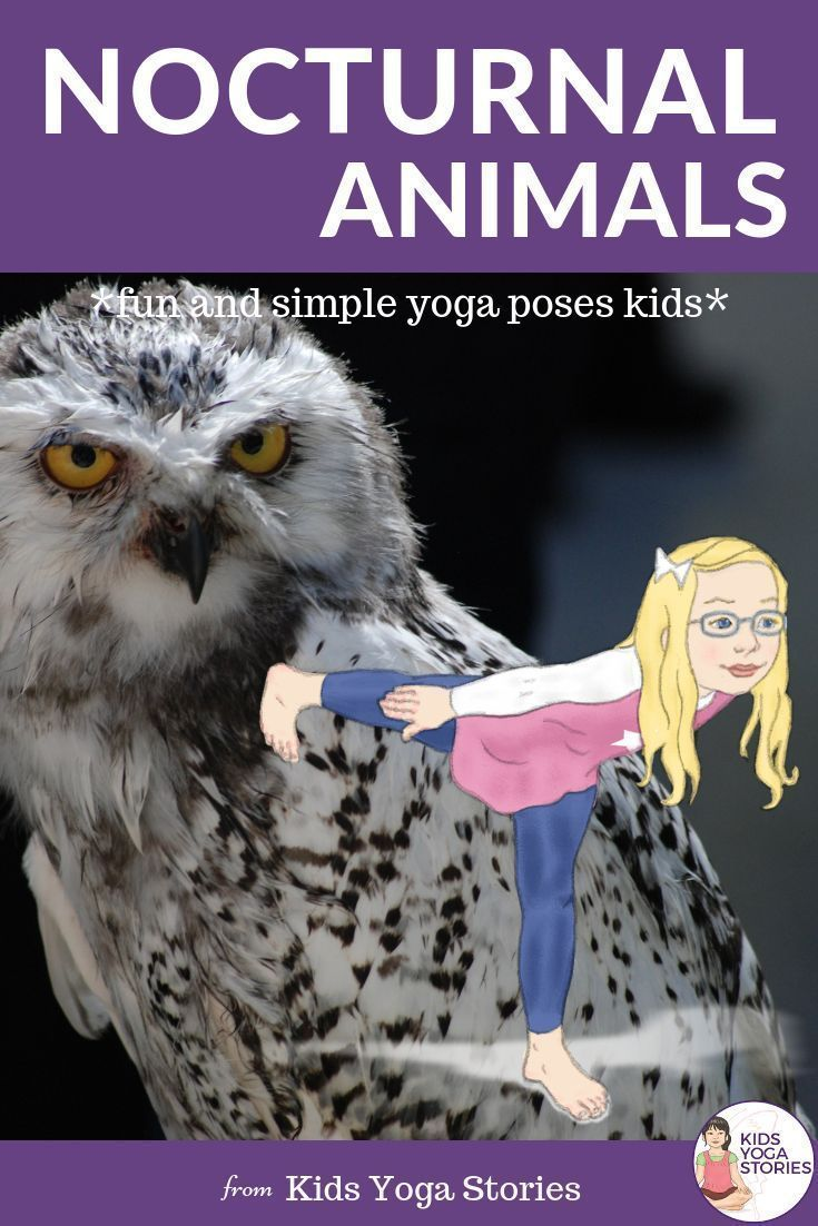 Nocturnal Yoga Cards for Kids